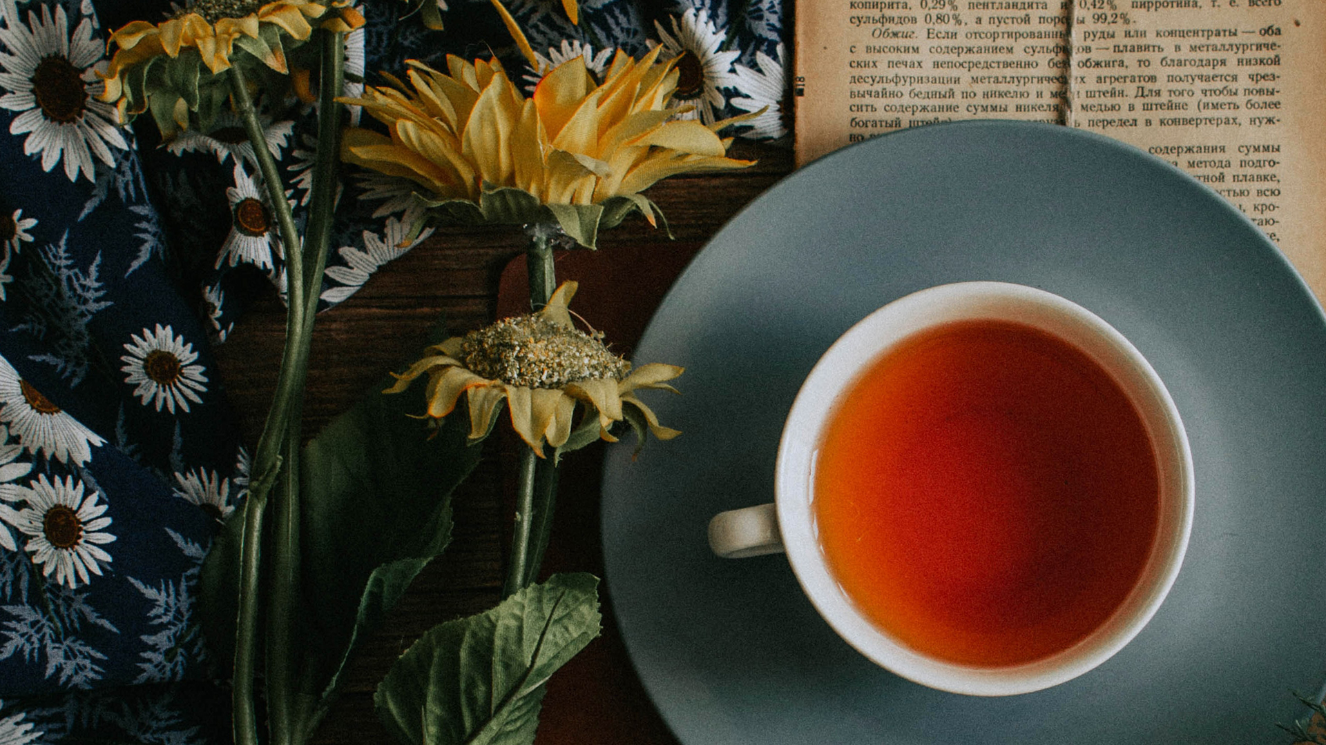 Read more about the article Beverages – Tea and Bone Density